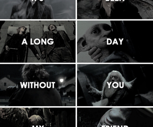 always, dumbledore, and fan image