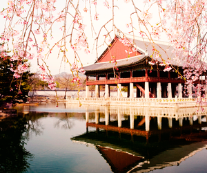 asia, beautiful, and city image
