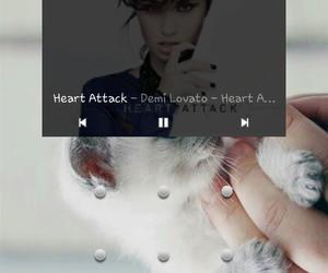 cat, demi lovato, and heart attack image