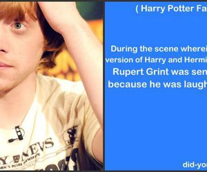 harry potter, rupert grint, and ron weasly image