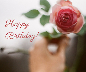 flowers, happy birthday, and rose image
