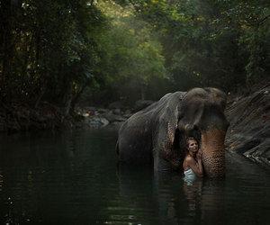 girl, elephant, and nature image