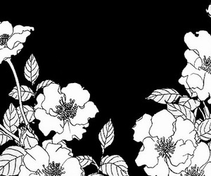 flowers, monochrome, and manga image