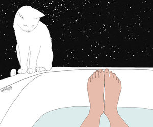 cat, bath, and drawing image