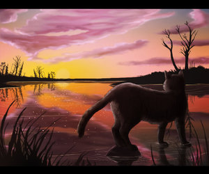 sunset and warrior cats image