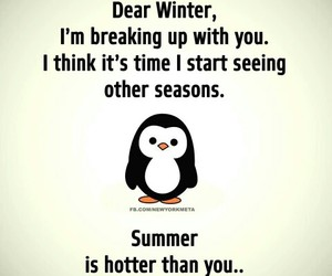 summer, funny, and winter image