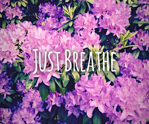 breathe, flowers, and just image