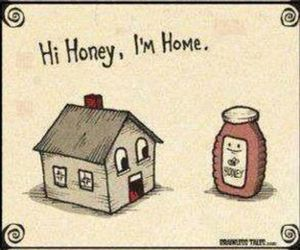 funny, honey, and home image