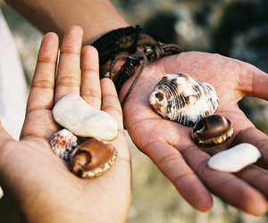shells, hands, and vintage image
