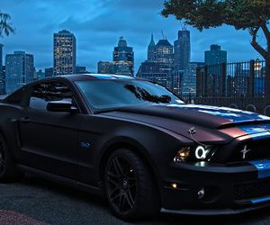 car, black, and ford image