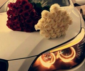 car, rose, and white image