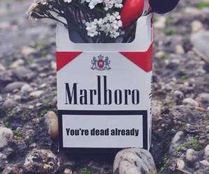 cigarette, flowers, and dead image