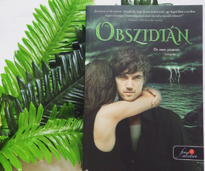book, booklovers, and obsidian image