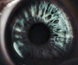 eye, hipster, and photography image