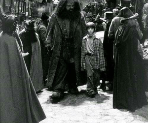 harry potter, hagrid, and hp image