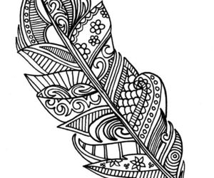doodle and feather image