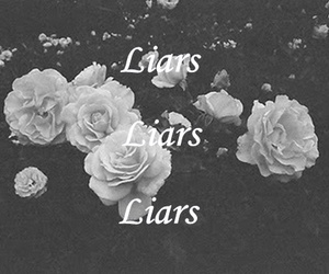 Liars, rose, and flowers image