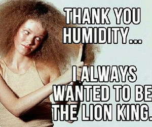 hair, funny, and humidity image