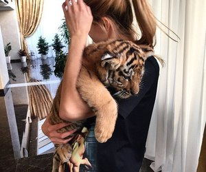 inspiration, tiger, and happiness image