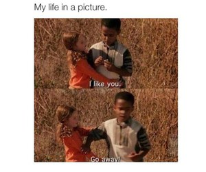 funny, mean girls, and life image
