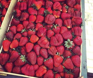 food, strawberries, and yummy image