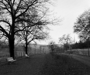 b&w, country, and france image