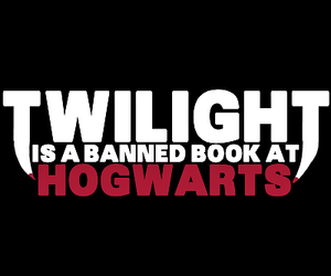 harry potter, text, and twilight is shit image