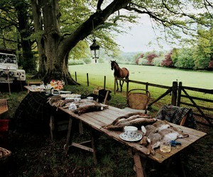 countryside, hunting, and lifestyle image