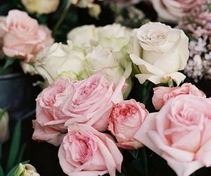 bouquet, rosa, and woman image