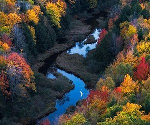 autumn, river, and nature image