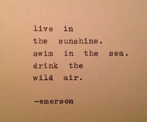 quotes, sea, and wild image