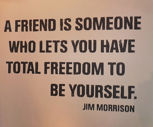 friends, quote, and freedom image