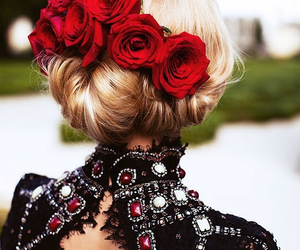 fashion and rose image