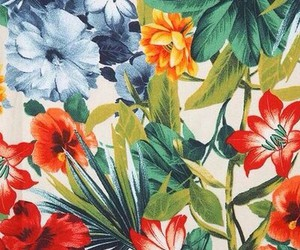 colours, wallpaper, and flowers image