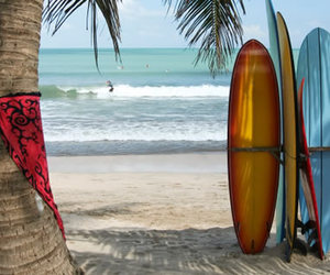 beach, surfing, and surf image