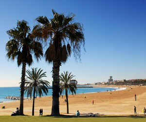 Barcelona and summer image