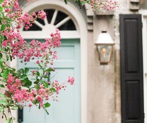 flowers, door, and pink image