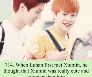 luhan, xiumin, and exo image