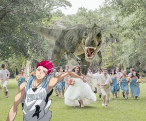 funny, lol, and knb image