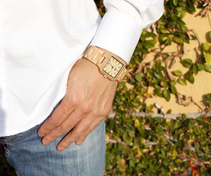 eco, watches, and wewood image