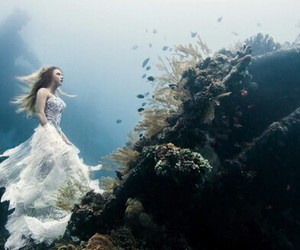 dresses, photography, and underwater image