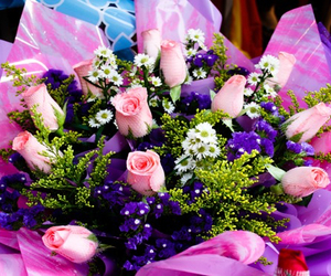 colourful, summer, and sexy flowers pretty image