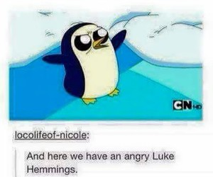 5sos, penguin, and luke hemmings image