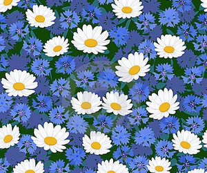 colour, floral, and backgrounds image