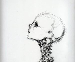 art, drawing, and skeleton image