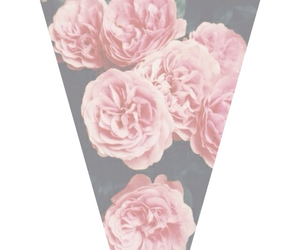 background and rose image