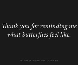 love, butterflies, and quote image