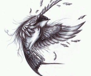 drawing, bird, and art image