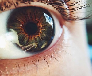 eyes, tumblr, and green image