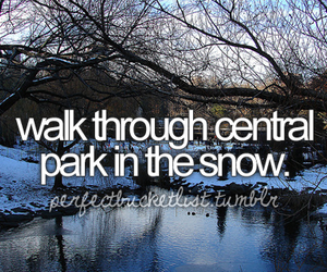 snow, Central Park, and before i die image